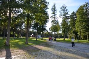 Saaremaa, Camping Tehumardi